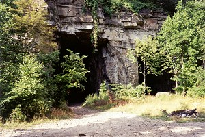 Forty-Foot Openings of the Casparis Mines